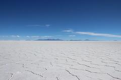 Salar de Uyuni - Bolivia (D. Kaminaga) Tags: southamerica bolivia desierto salar sudamerica uyuni americadelsur