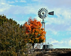 Fall Color Windmill Wednesday.HWW (The Old Texan) Tags: trees sky color fall windmill