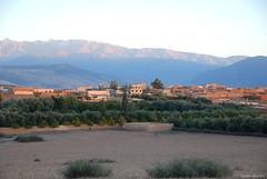 Makhfamane (Mathias Dezetter) Tags: montagne village culture maroc atlas agriculture olivier champ brousse agricole