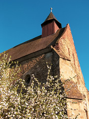 Buttress (Raoul Pop) Tags: blooms flowers corner buttress church historic structure tree darlos transilvania romania ro spring