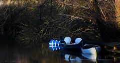 15-426 (lechecce) Tags: nature denmark 2015 dockbay blinkagain
