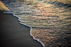 A Leading Edge - Jumeirah Beach, Dubai - Leica M9-P (Sparks_157) Tags: ocean leica city travel sunset sea urban seascape detail texture beach water sand asia dubai waves afternoon tide uae naturallight rangefinder shore foam amit arabiangulf jumeirahbeach leicam9 50mmf14summilux m9p amitkar
