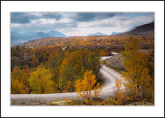 Follow the road (andreassofus) Tags: landscape grandlandscape nature norway rondane rondanenationalpark nationalpark blsterdalen autumn fall autumncolors road trees forest woods mountains sky outdoor hiking travel travelphotography canon september colorful color beautiful awesome scandinavia
