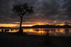 Sunset of Burnished Gold  over Loch Lomond at Milarrochy Bay  - Scotland (Magdalen Green Photography) Tags: sunsetofburnishedgold sunset pretty scottishlandscape magdalengreenphotography lochlomond milarrochybay scotland scottishlandscapes bonniescotland beautiful 3512 tree rocks mountains golden water