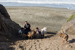 Funston Trail (LeftCoastKenny) Tags: fortfunston pacificocean dogs dogwalkers beach sand funstonbeachtrail