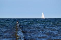 Ein Tag am Meer...         -          One day at the ocean... (chrissie.007) Tags: meer ozean ocean sea eintagammeer onedayattheocean