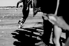 Desafo Doana (DANG3Rphotos) Tags: desafio doana spain andalucia sanlcar de barrameda run black autor noir negro blackandwhite blancoynegro nikon d7100 nikonista dang3rphotos dang3r creative look vision style creativo imagen photo 2015 shot camera inspiration ver like this photos foto fotografia love art artist life light lights