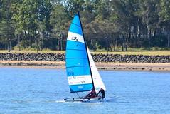 DSC_0313 (LoxPix2) Tags: loxpix queensland australia sailing catamaran trimaran nacra hobie arrow moth 505 maricat humpybongyachtclub humpybash aclass f18 mosquito laser bird spinnaker woodypoint