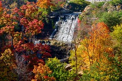 Albion Falls in the Fall (AncasterZ) Tags: fall autumn fallcolor falls waterfalls albionfalls ef85mmf18usm