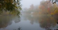 Morning Mist (soupie1441) Tags: london ontario canada nikon d7200 nikkor 1801400mm fog mist thames river autumn fall colours colour leaves trees bridge meadowlily pottersburg reflection