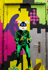 151 (Damian.ojodepez) Tags: colour flickr nikkor london travel light people rabbit
