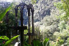 Jungle (omar de luna) Tags: xilitla edwardjames laspozas slp mexico jungle nature