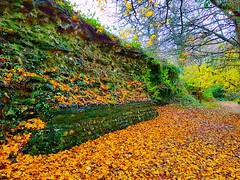 Remains of a 1,800 year old wall built by the Romans in the English countryside. (davidconnell2) Tags: romanwall roman romanbritain autumn fall countrywalk ancient ruins romanempire path