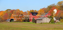 Amish Barn and Fall Color 5812 (intricate_imagery-Jack F Schultz) Tags: jackschultzphotography intricateimageryphotography amishcountry ohioamish southeasternohio fallcolor amishfarm