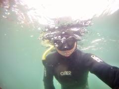 GOPR5915 (ambrogi_taubate) Tags: naturezaselvagem marinha mergulhando ubatuba sp brasil naturezamarinha fantstica apneia 10m setembro primavera 2016
