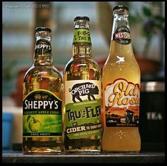 Cider for Saturday (zweiblumen) Tags: cider sheppys oldrosie orchardpig westons canoneos50d canonef50mmf14usm polariser zweiblumen