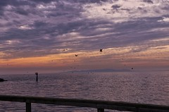 Sunset from the Pier (robinlamb1) Tags: landscape seascape pacific sky outdoor sunset dusk pier whiterock clouds ocean