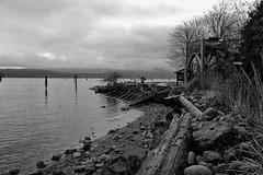 Time To Think (Brian McAllister Fuji X) Tags: monochrome bw blackwhite coastal vancouverisland westcoast marine x70 fuji fujix