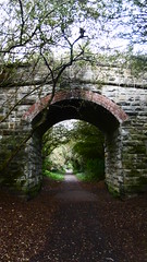 Overbridge near Pinfield Close (Scarborough - Whitby  old railway) (dave_attrill) Tags: scarborough whitby disused line trackbed route cinder path dr beeching report 1965 ner north eastern railway october 2016 scalby