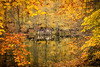 yedigoller reflection (ozancebeci) Tags: reflection yedigöller lake autumn nature