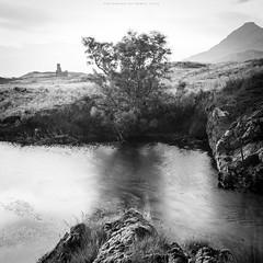 Quiet corner by Loch Assynt (Premysl Fojtu) Tags: ardvreck castle scotland burn rock tree windy movement motion blur blackandwhite monochrome bw dslr canon eos 5dmkii fullframe ef1740 square nature countryside ndfilter