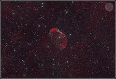 The Crescent Nebula - A Wonder of Cygnus (Trevor Durity) Tags: deepsky nebula ngc6888 stars nightsky astrophotography astronomy cygnus hydrogenalpha ha oiii asi1600 asi1600mm zwo megrez 90 williamoptics pixinsight