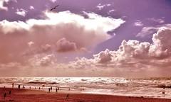 Summer Memories (farmspeedracer) Tags: nature summer island beach sea sky cloud people afternoon light germany august shore