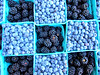 Fall in Love with Blue (idietitianin) Tags: healthy yummy fruits blueberries refreshing