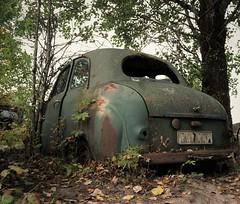 (Jonas.W.) Tags: abandoned rusted forgotten rusty cargraveyard bilskrot car vehicle transport samsung nx300