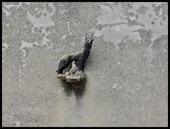 DOG & PIGEON (LitterART) Tags: chien cane dog dove taube pigeon sculpture padna slowenien slovenia istrien istra istria piran nikon nikonp330 schferhund deutscherschferhund shepherddog tiere animals animaux