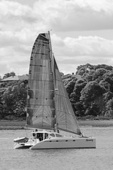 Necessity (ewan.osullivan) Tags: bw boat monochrome blackandwhite yacht necessity catamaran boston thompsonisland