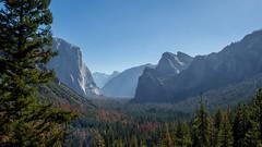 Inspiration of Ansel Adams (Fabio Enrico Spagnoli) Tags: anseladams yosemitenationalpark landscape valley sky halfdome pine nature