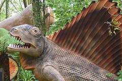 Wait! You're Not a Dinosaur! (Dick Dangerous) Tags: uk britain wales danyrogof show caves brecon beacons national park dimetrodon synapsid