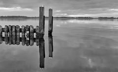 Nieuwkoop - Netherlands ( Wim ) Tags: nieuwkoop netherlands wimgoedhart nikon nikkor minimalist abstract blackwhite bright water lake