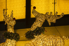 Christmas on A Great Street, Orchard Road, Singapore 2016 (gintks) Tags: gintaygintks gintks singapore singaporetourismboard sg51 orchardroad orchardcentral ion paragon yoursingapore exploresingapore