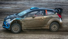 Ford Fiesta RS WRC-Gerald Rigler Martin Roßgatterer (Dag Kirin) Tags: ford fiesta rs wrcgerald rigler martin rosgatterer santa domenica rally croatia