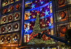 support to believe (pbo31) Tags: sanfrancisco california nikon d810 november 2016 fall city bayarea boury pbo31 color night dark black unionsquare christmas urban holidays macys shopping season christmastree lights
