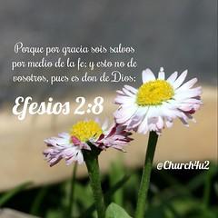 """Efesios 2-8 """"Porque por gracia sois salvos por medio de la fe; y esto no de vosotros, pues es don de Dios;"""" (@CHURCH4U2) Tags: bible verse pic"""