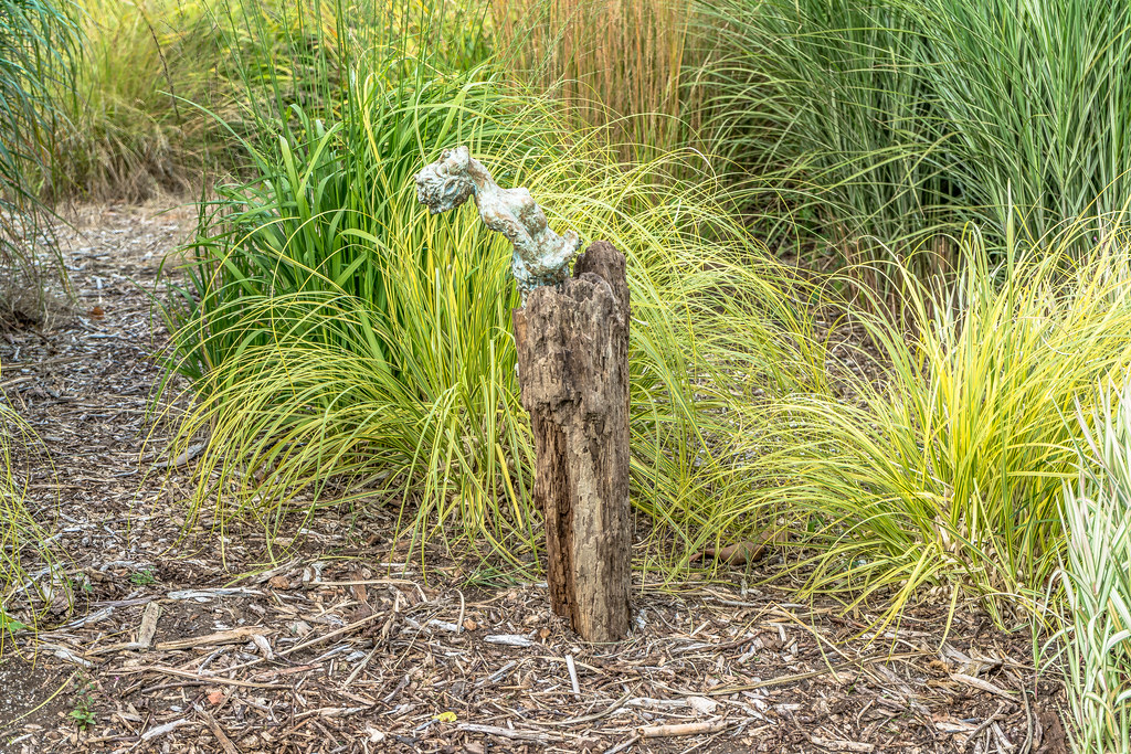 SCULPTURE IN CONTEXT 2015 AT THE NATIONAL BOTANIC GARDENS [UNOFFICIAL PREVIEW] REF-107302