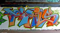 Den Haag Graffiti : FRIS (Akbar Sim) Tags: holland netherlands graffiti nederland denhaag thehague fris agga akbarsimonse akbarsim
