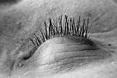 Colline (lisheba) Tags: femme oeil foret cils dtails