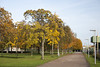Floriade_251015_42 (Bellcaunion) Tags: park autumn fall nature zoetermeer rokkeveen florapark
