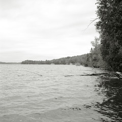 Shores of the Lake of Bays (Bill Smith1) Tags: ontario muskoka fujineopan100acros yourstodiscover hc110b fall2015 rolleiflexseriese35planartlr