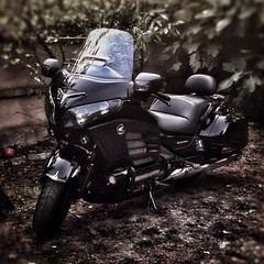 Honda Goldwing #honda #goldwing #hondagoldwing #moto #motorcycle #motorcycles #motorbike #hondagoldwingf6b #hondagoldwing1800 #riders #rider #ghostrider