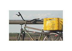 (marco zampieron) Tags: parque argentina rio bicicleta amarillo rosario bici parana descanso baranda canasto