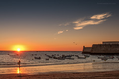 Dorada Caleta de Cdiz (Javier Martinez de la Ossa) Tags: sunset espaa andaluca playa puestadesol barcas cdiz gaviotas ocaso caleta balneario javiermartinezdelaossa flickrbronzetrophygroup