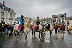 Namur bndiction animaux (Yasmine Hens) Tags: saint europa flickr belgium ngc explore cathdrale hubert fte animaux namur hens yasmine bndiction aubain yasminehens