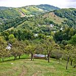 Carpathian Mountains near Babyn thumbnail