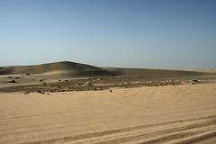 qatar deserto (57) (Parto Domani) Tags: trekking desert dunes dune arabic east ash desierto oriente middle duna peninsula medio dne wste dunas qatar deserto arabica dsert dnen penisola   escursione     shaqra dunaire  wste dsert dnen  dne