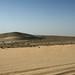 qatar deserto (57)